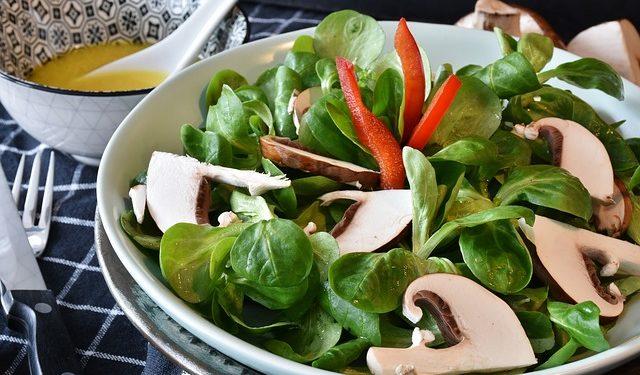 sałatka z warzywami fotografia